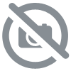 Galet Calcite orange 45-55g